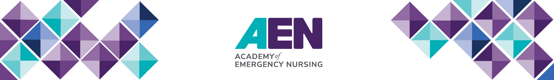 2021 AEN Board Application Event Banner